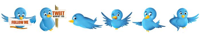 Twitter Bird Icon Set